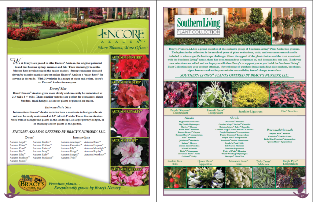 Plant Catalogs Discover Our Selection